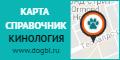 dogbi_120x60